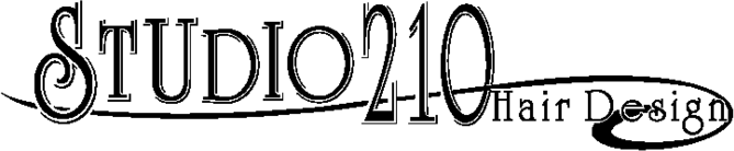 Studio 210 Logo